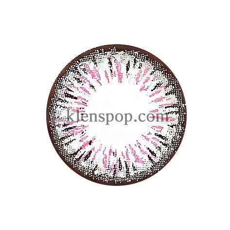 ELLEN PANDA PINK (4COLOR) Graphic Diameter 14.5mmLENSPOPLENSPOP