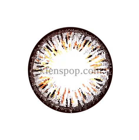 ELLEN PANDA BROWN (4COLOR) Graphic Diameter 14.5mmLENSPOPLENSPOP