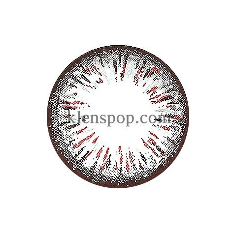 ELLEN PANDA GRAY (4COLOR) Graphic Diameter 14.5mmLENSPOPLENSPOP